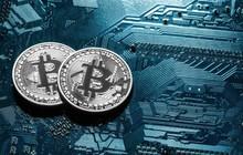 Phí giao dịch bitcoin thấp nhất 6 tháng, thị trường tiền số vẫn ngập sắp đỏ