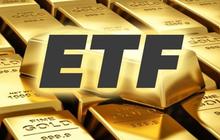 SSI dự báo: Quỹ ETF FTSE Vietnam có thể loại FLC và GTN, thêm VRE