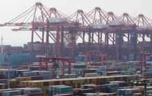 45 tổ chức thương mại Mỹ kêu gọi ông Trump không đánh thuế hàng Trung Quốc