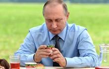 Thói quen ăn uống của tổng thống Vladimir Putin: Ít nhưng chất và cực khắt khe!