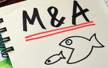 TGĐ Deloitte Việt Nam: Thị trường M&A tương lai gần vẫn là cuộc chơi chính của đại gia ngoại