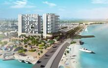 Đà Nẵng: Hạn chế xây chung cư cao tầng có diện tích dưới 1.200m2