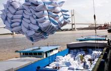 Xuất khẩu gạo tăng rất mạnh