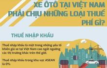 Infographic: Ôtô tại Việt Nam phải gánh những loại thuế phí gì?