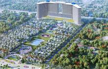Nhờ công ty con Cam Lâm, KPF báo lãi 17 tỷ đồng quý 1
