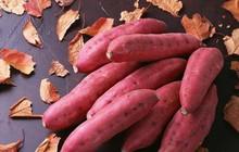 Khoai lang chứa nhiều lợi ích tốt cho sức khỏe nhưng cần tránh mắc phải 3 sai lầm này khi ăn