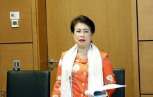 Kiến nghị xử lý Phó Bí thư Đồng Nai Phan Thị Mỹ Thanh