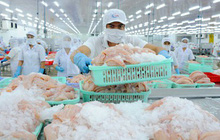 Phụ thuộc thị trường Trung Quốc sẽ lắm bất lợi