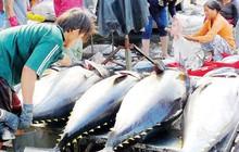 Khắc phục thẻ vàng hải sản: Cơ bản hoàn thành 9 khuyến nghị của EU