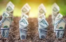 HNX điều chỉnh tỷ lệ cổ phiếu tự do chuyển nhượng rổ chỉ số HNX 30