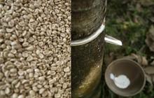 Thị trường hàng hóa ngày 19/5: Cao su, cà phê, đường cùng tăng giá trong khi dầu mỏ, thép, đồng, nhôm đi xuống