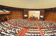 Ủy ban Kinh tế đề nghị tính toán tỷ lệ thất thoát tài sản công/GDP!