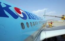 Hàn Quốc tịch thu hàng lậu nghi của gia đình Chủ tịch Korean Air