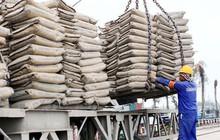 Tiêu thụ và xuất khẩu xi măng tăng mạnh