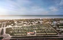 Biệt thự biển giá trị  thực tại Bãi Trường hấp dẫn nhà đầu tư