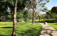 Thủ Đức sẽ thu hồi đất công làm công viên, trường học