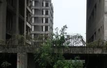 """Cận cảnh """"hoang tàn"""" dự án bệnh viện 700 giường đầu tư 850 tỉ đồng"""