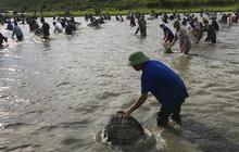 Cả trăm người hú vang rồi nhảy xuống vực đánh cá