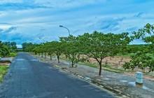 Phúc Khang trao sổ đỏ cho khách hàng Dự án Phước An - Nhơn Trạch – Đồng Nai
