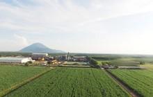 Giãn ATIGA - cú hích thay đổi cục diện ngành mía đường?