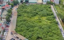 Sau 'lệnh' Chủ tịch Hà Nội, bãi xe lậu trên đất 'vàng' vẫn hoạt động