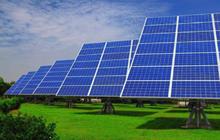 Tập đoàn Cá Tâm Việt Nam đầu tư dự án điện mặt trời 1.200 tỷ đồng tại Ninh Thuận