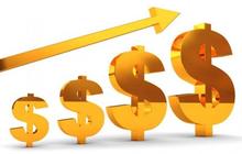 VMI, IVS, DRC, MTG, PXL, GKM, QPH, TNW, NS3, PHH, HMS, DNW: Thông tin giao dịch lượng lớn cổ phiếu