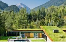 """Ngôi nhà trong núi vô cùng độc đáo với phần mái """"lợp cỏ"""""""