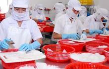 Xuất khẩu sang EU gặp khó, ASEAN trở thành thị trường tiềm năng cho mực và bạch tuộc