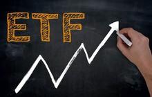 Tuần 9 – 13/7: Quỹ ETF nội VFMVN30 đã phát hành ròng 4,3 triệu chứng chỉ quỹ