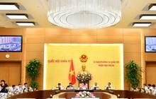 Ủy ban Thường vụ Quốc hội phê chuẩn đề nghị bổ nhiệm 16 Đại sứ