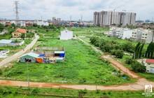 Chính phủ chỉ đạo TP.HCM xử lý nhiều doanh nghiệp lớn sai phạm nghiêm trọng về đất đai