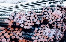 Vừa đưa người vào lãnh đạo, Kyoei Steel lại muốn gia tăng tỷ lệ sở hữu tại Thép Việt Ý