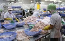 Vĩnh Hoàn (VHC) xuất khẩu 6 tháng đạt 163 triệu USD, hoàn thành 47% kế hoạch năm