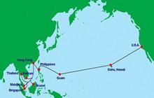Khắc phục xong sự cố trên cáp quang biển AAG vào ngày mai 19/7