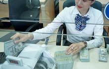 Giá USD tăng nhưng không có căng thẳng ngoại tệ