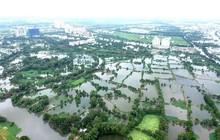 TPHCM chuyển đổi 26.000ha đất nông nghiệp: Thị trường bất động sản sẽ có biến động