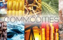 Đà giảm giá của hàng hóa vẫn chưa kết thúc?