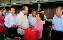 Thủ tướng thị sát 'thương hiệu' riêng của Hà Tĩnh