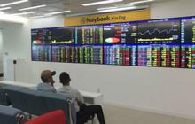Chứng khoán MayBank Kim Eng (MBKE): Lỗ tự doanh tăng mạnh, lãi ròng nửa đầu năm vẫn gấp 4 lần lên 37 tỷ đồng