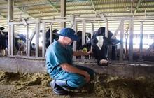 TH true MILK đã sẵn sàng ra mắt sữa A2 - dòng sản phẩm từng nhập khẩu 100%