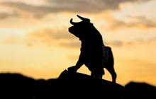 """Cổ phiếu ngân hàng """"dẫn sóng"""", Vn-Index nhẹ nhàng vượt mốc 980 điểm"""