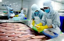 Nhiều tờ báo tại Rumani đưa thông tin bất lợi cho cá tra Việt Nam