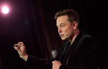 Cổ phiếu Tesla lao dốc sau bài phỏng vấn đầy nước mắt của Elon Musk với New York Times