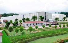 Công ty CP Khoáng sản Công nghiệp Yên Bái chuẩn bị niêm yết, thêm lựa chọn cho nhà đầu tư