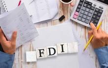 Trăm tỷ FDI đổ vào Việt Nam: Nhiều tác động tiêu cực về môi trường, cạnh tranh… không được đề cập