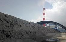 Đoàn ĐBQH Bình Thuận giám sát việc xử lý tro xỉ ở Vĩnh Tân