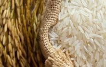 Chính phủ ra quy định mới về điều kiện kinh doanh xuất khẩu gạo
