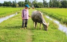 """Chấm dứt việc thu phí """"lạ"""" ở Quảng Bình và trả lại tiền cho dân"""