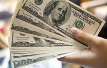 """USD ngân hàng """"nhảy múa"""", tỷ giá trung tâm lên đỉnh mới"""